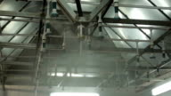 water sprinkler for cooling sausage products manufacturing video