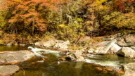 Water Stream with Fall Colored Trees at Linville Falls, NC video