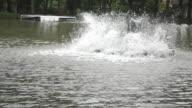 Water Treatment Wheel video