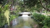 Water turbine in the garden video