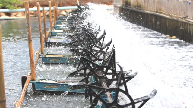 Water turbines on Shrimp ponds. video