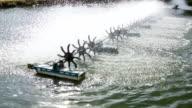 Water wheel in prawn farm video