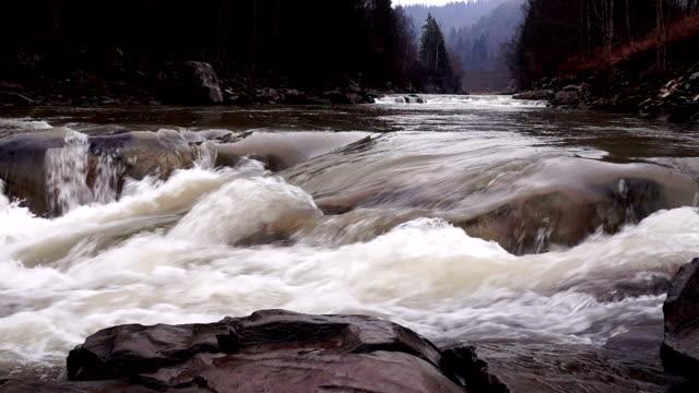 Watercourse of a Mountain Stream video