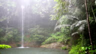 Waterfall at borneo rainforest in rainy day video