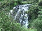 Waterfall Behind Trees / Bush video