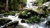 Waterfall Flowing,Phu Kradueng, Loei,Thailand video
