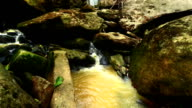 Waterfall in deep forest video