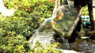 Waterfall in park video