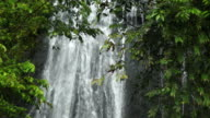 Waterfall in  Rainforest video
