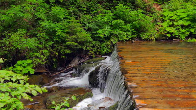 Waterfall in the mountains near the village Pylypets, Carpathians video