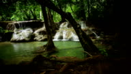 Waterfall in the Rainforest video