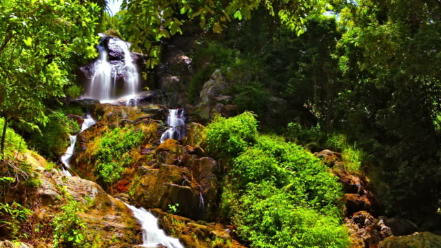 Waterfall in tropical forest video