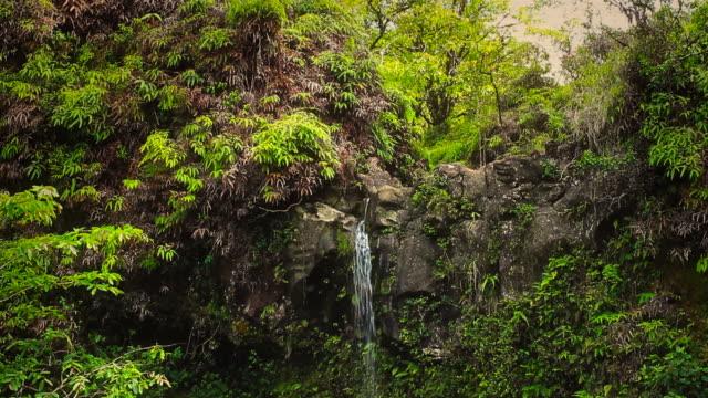 Waterfall in Tropical Paradise (Pan Down) video