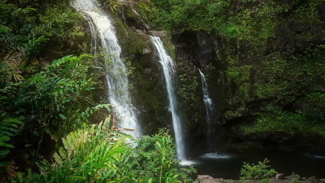 Waterfall in Tropical Paradise video
