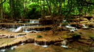 Waterfall in Tropical Rainforest; TIME LAPSE video