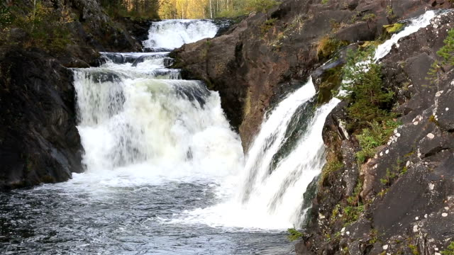 Waterfall Kivach in the protected forest of Northern Europe. video