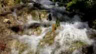 Waterfall nature background slow motion video