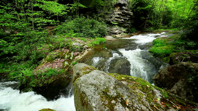 Waterfall - Nature background video