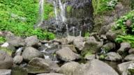 Waterfall Poco do Bacalhau, Faja Grande, Flores (Azoren) video
