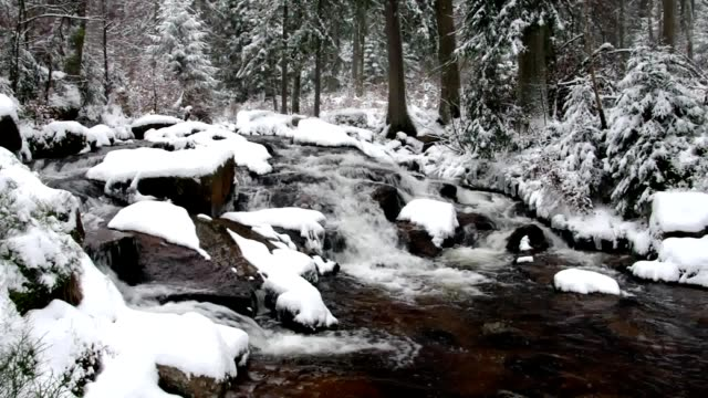 waterfall river Bode in Winter video