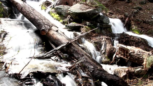 Waterfall Sequoia National Park California Usa video