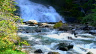 Waterfalls in the Los Glacieres National Park video