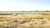 WS Waterhole In The African Savannah video