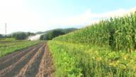 HD: Watering The Fields video