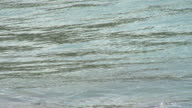 Wave Brava Beach video