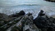 Wave hd video