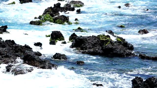 Wave smashing the rocks video
