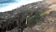 Wave Spraying Out Of Lava Spout Horn Newport Oregon video