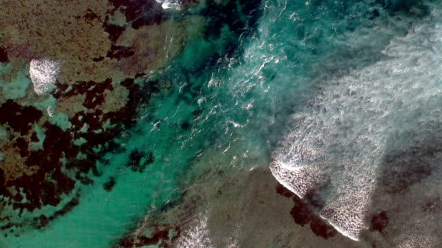 Waves breaking in a channel between the reefs video