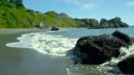 Waves Crashing On A Beautiful, Green Beach Shoreline. video