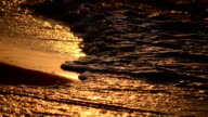 waves on the beach at sunset, dawn close-up video