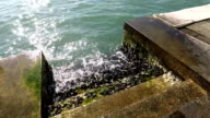 Waves strike steps in the sea, green mold, quay in Venice, Italy video