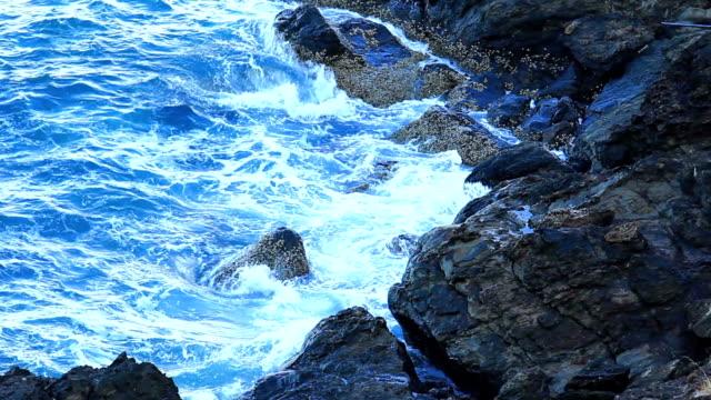 Waves video