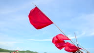 waving a red flag with blue sky background video