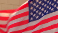 Waving American Flags - Stock video video