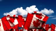 Waving Canada Flags video