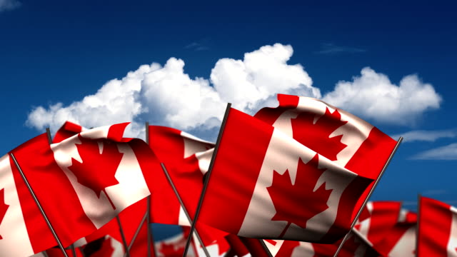 Waving Canada Flags video