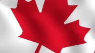 Waving Canadian Flag Closeup video