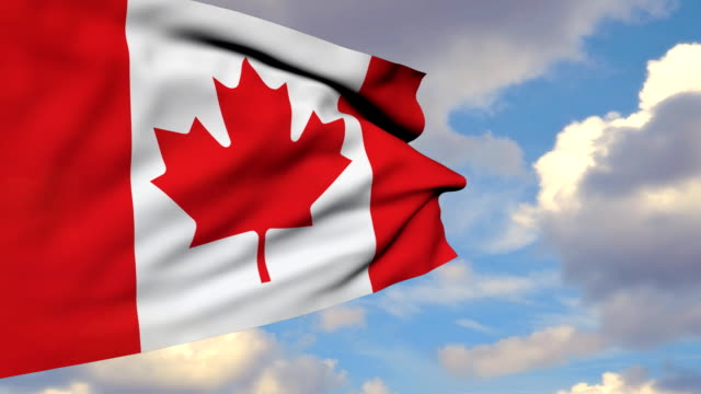 3D Waving Canadian Flag video
