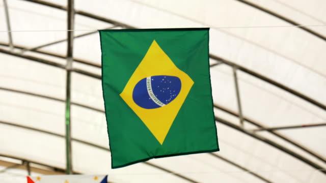 Waving Fabric Flag of Brazil video