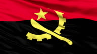 Waving Falg Of Angola video