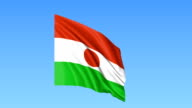 Waving flag of Niger, seamless loop. Exact size, blue background. Part of all countries set. FullHD video