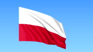Waving flag of Poland, seamless loop. Exact size, blue background. Part of all countries set. FullHD video