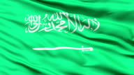 Waving Flag of Saudi Arabia with the Arabic writing and a sword,seamless looping video