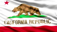 Waving Flag Of The US State Of California video