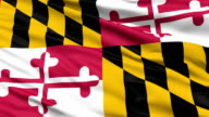 Waving Flag Of The US State of Maryland video